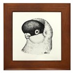 Helmet Shortface Pigeon Framed Tile