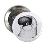 "Helmet Shortface Pigeon 2.25"" Button"