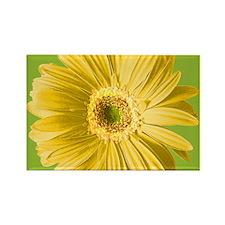 Pop Art Yellow Daisy Rectangle Magnet