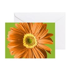 Pop Art Orange Daisy Greeting Cards (Pk of 20)