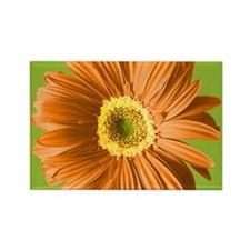Pop Art Orange Daisy Rectangle Magnet