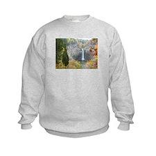 Taughannock Falls Sweatshirt