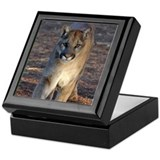 Cooper's Cougar Shop Keepsake Box