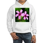 Violet Sorrels Hooded Sweatshirt
