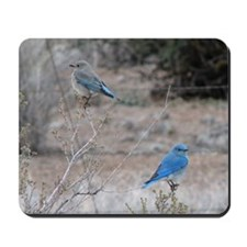 bluebirds on fence Mousepad