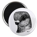 "Stettiner Shortface Pigeon 2.25"" Magnet (100"