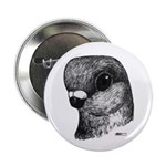 "Stettiner Shortface Pigeon 2.25"" Button"
