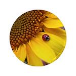 Ladybugs on Flowers 3.5