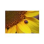 Ladybugs on Flowers Rectangle Magnet