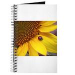 Ladybugs on Flowers Journal