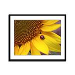 Ladybugs on Flowers Framed Panel Print