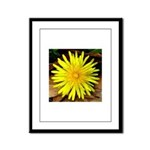 Dandelion Framed Panel Print