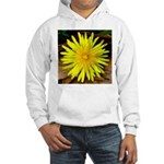Dandelion Hooded Sweatshirt