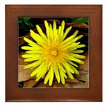 Dandelion Framed Tile