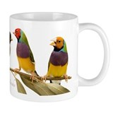 Gouldian Finch Mug