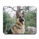 Mountain Dog Mousepad