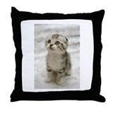 Cute Kitten Throw Pillow