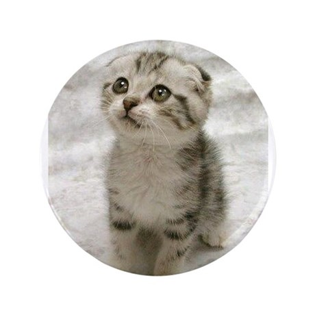 "Cute Kitten 3.5"" Button (100 pack)"