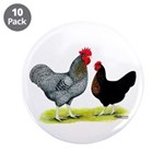 "Black Sex-linked Chickens 3.5"" Button (10 pac"