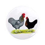 "Black Sex-linked Chickens 3.5"" Button (100 pa"