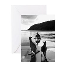 Unique Kangaroo Greeting Card