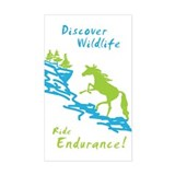Endurance Horse Rectangle Decal