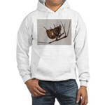 Spider at 12 X Hooded Sweatshirt