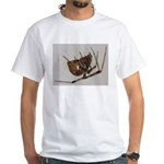 Spider at 12 X White T-Shirt