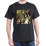 Lichen on Canvas by Picasso T-Shirt