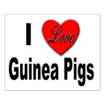 I Love Guinea Pigs Small Poster