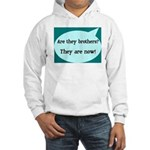 They're Brothers Now! Hooded Sweatshirt