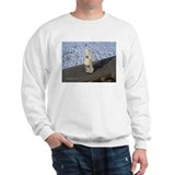 Cold Beer Jumper