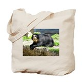 Spectacled Bear Tote Bag