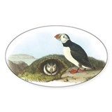 Atlantic Puffin Oval Decal