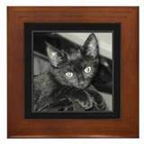 Cute Black Kitty Framed Tile