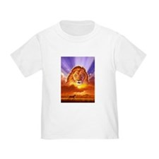Lion King Baby Clothes...