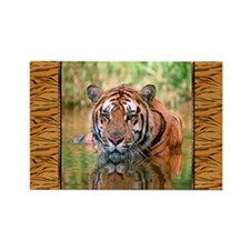 Bengal Tiger In Water Rectangle Magnet