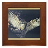 Funny Fearful owl Framed Tile