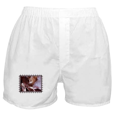 Cat and Ballet Slippers Boxer Shorts