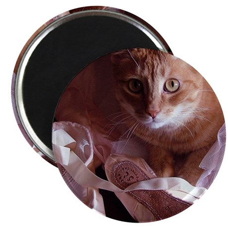 Cat and Ballet Slippers Magnet