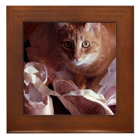 Cat and Ballet Slippers Framed Tile