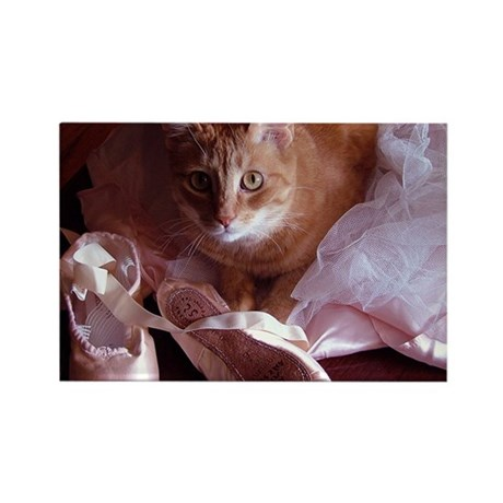Cat and Ballet Slippers Rectangle Magnet