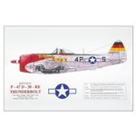 Republic Thunderbolt Aircraft Large Poster