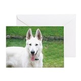 Unique White german shepherds Greeting Card