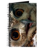 Mysterious Owl! Journal