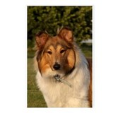 Classic Collie Postcards (Package of 8)
