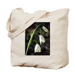 Floral Lanterns Tote Bag