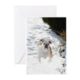 English Bulldog Greeting Cards (Pk of 20)