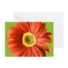 Pop Art Red Gerbera Daisy Greeting Cards (Pk of 10