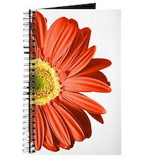 Pop Art Red Gerbera Daisy Journal